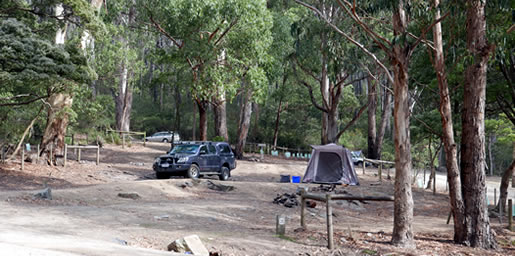 camping fortescue bay