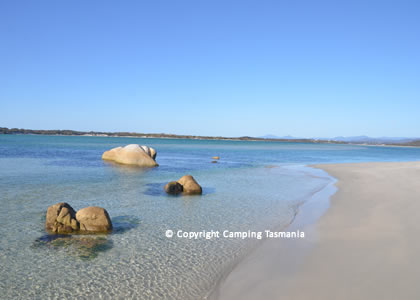 Dora Point Free Camping Binalong Bay Of Fires St Helens Campsite
