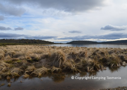 Little Pine Lagoon Camping Miena Free Accommodation Tasmania Fishing Wayatinah Village Campsites Trout Fishing Free