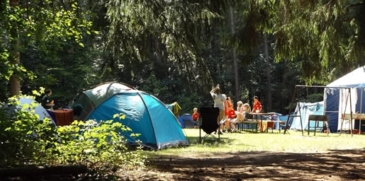 About Camping Tasmania Disclaimer Free Campsite Campgrounds